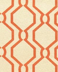 Stout Slick 1 Tigerlily Fabric
