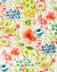 Stout Sorantino 1 Springti Fabric