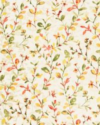 Stout Spoletto 1 Strawberr Fabric