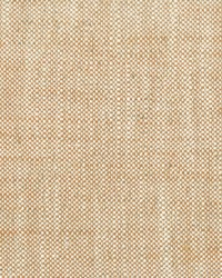Stout Treble 2 Marmalade Fabric