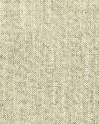 Stout Treble 4 Truffle Fabric