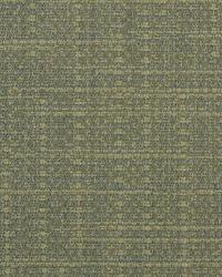 Duralee 32504 19 Fabric