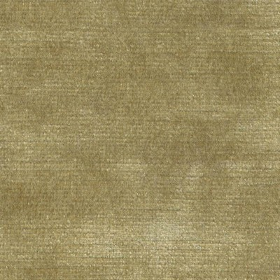 Kasmir ARISTOCRAT       ANTIQUE GOLD     Search Results