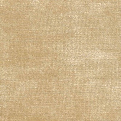 Kasmir ARISTOCRAT       GOLDENROD        Search Results