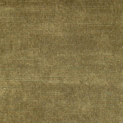 Kasmir ARISTOCRAT       MUSTARD          Search Results