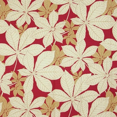Kasmir AUTUMN LEAVES    RED              Search Results