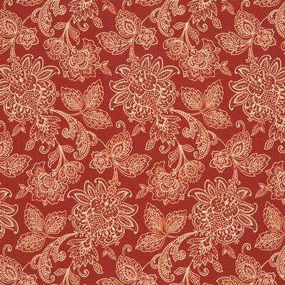 Kasmir BENGAL PAISLEY   CLEMENTINE       Search Results