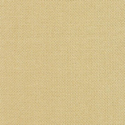 Kasmir CRISTAL TEXTURE  ALMOND           Search Results