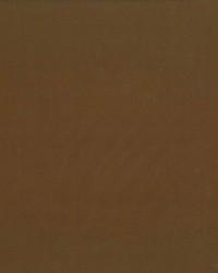 Debonair Cocoa by