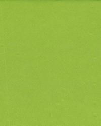 Debonair Lime Green by