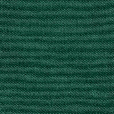 Kasmir KIMBERLY         WINDSOR GREEN    Search Results
