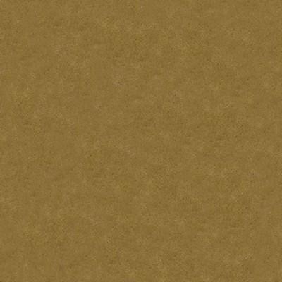 Kasmir LA SCALA         CAMEL            Search Results
