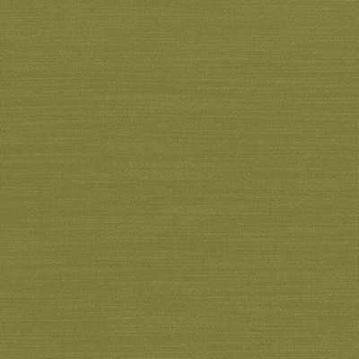 Kasmir LUXE             CHARTREUSE       Search Results
