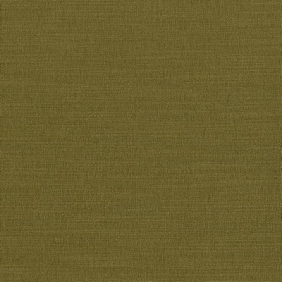 Kasmir LUXE             OLIVE            Search Results