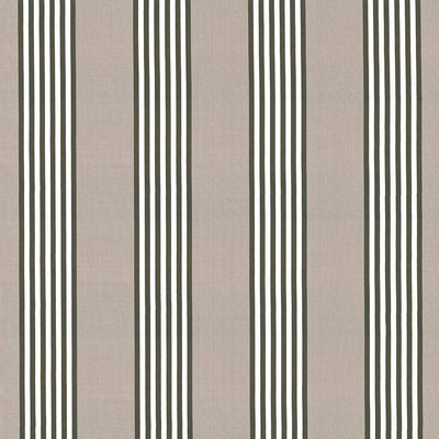 Kasmir PIERRE STRIPE    JUTE             Search Results