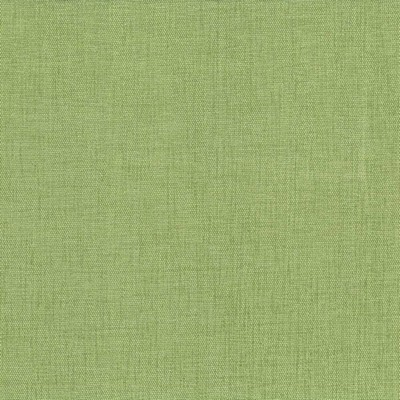 Kasmir PINNACLE         GRASS            Search Results