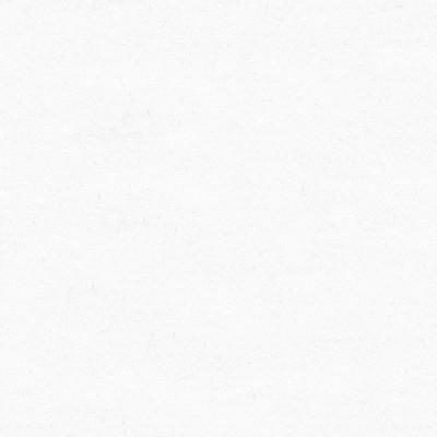 Kasmir QUINTESSENTIAL   BLEACH WHITE     Search Results