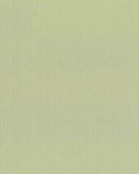 Seductive Moss by