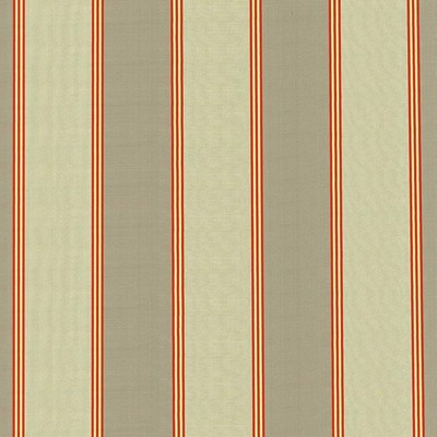 Kasmir ST MARTIN STRIPE SPICE            Search Results