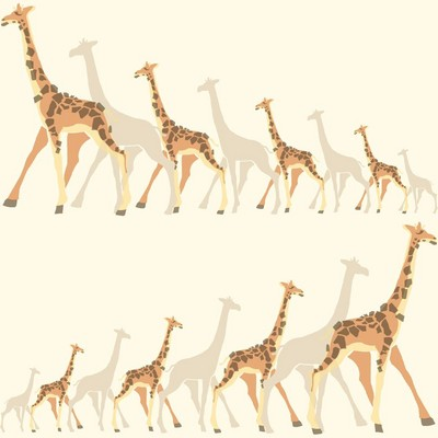 York Wallcovering DwellStudio Baby & Kids Giraffes                                           Oranges /Browns /Yellows   Animals