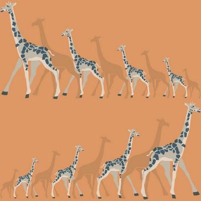 York Wallcovering DwellStudio Baby & Kids Giraffes                                           Oranges /Browns /Blues   Animals