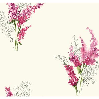 York Wallcovering Delphinium 11 RASBERRY Search Results