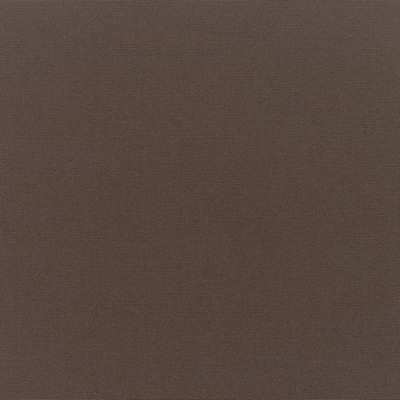 Silver State Canvas Walnut Sunbrella Fabric
