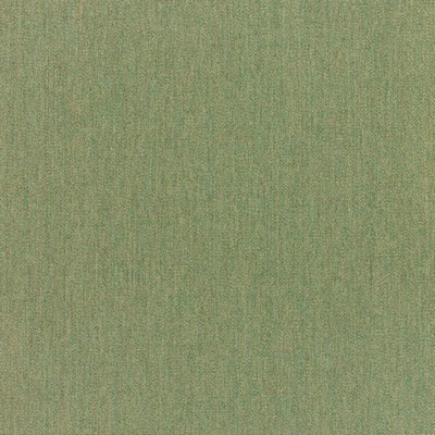 Silver State Canvas Fern Sunbrella Fabric