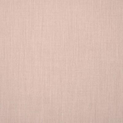 Silver State Canvas Flax Sunbrella Fabric