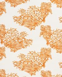 Schumacher Fabric Great Barrier Reef Orange Fabric