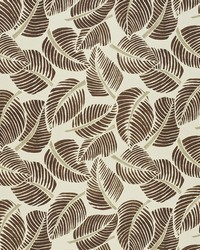 Schumacher Fabric Costa Rica Chocolate Fabric