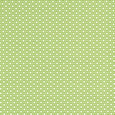 Schumacher Fabric QUEEN B II GREEN Search Results