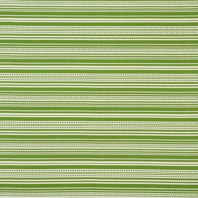 Schumacher Fabric STRIPEDOT II GREEN Search Results
