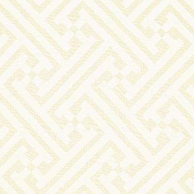 Schumacher Fabric DHARI CUTWORK WHITE NATURAL Search Results