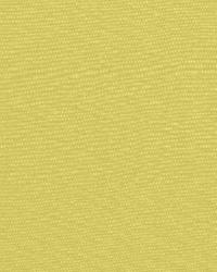 Schumacher Fabric Avery Cotton Plain Pear Fabric
