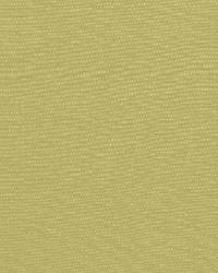 Schumacher Fabric Avery Cotton Plain Sage Fabric