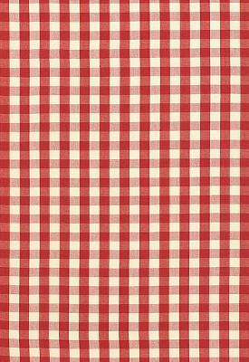 Schumacher Fabric ELTON COTTON CHECK RED Search Results