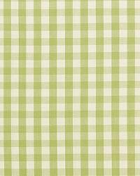 Schumacher Fabric Elton Cotton Check Sage Fabric
