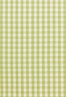 Schumacher Fabric ELTON COTTON CHECK SAGE Search Results