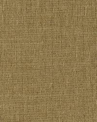 Schumacher Fabric Tiepolo Shantung Weave Mica Fabric