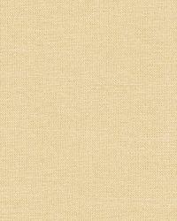 Schumacher Fabric Tiepolo Shantung Weave Bone Fabric