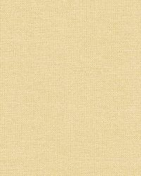 Schumacher Fabric Tiepolo Shantung Weave Ivory Fabric