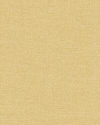 Schumacher Fabric Tiepolo Shantung Weave Champagne Fabric