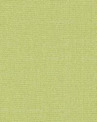 Schumacher Fabric Tiepolo Shantung Weave Limeade Fabric