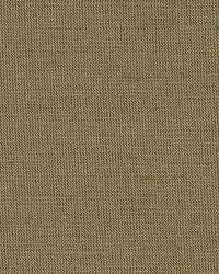Schumacher Fabric Tiepolo Shantung Weave Sage Fabric