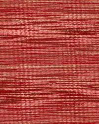 Schumacher Fabric Pozzo Weave Flame Fabric