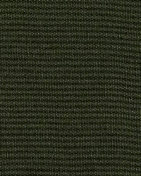 Schumacher Fabric Masaccio Taffeta Vert Fabric