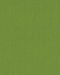 Schumacher Fabric Lange Leaf Fabric