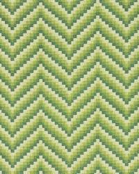 Schumacher Fabric Wilder Grass Fabric