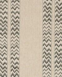 Schumacher Fabric Kudu Stripe Black Fabric